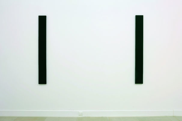http://www.hugopernet.com/files/gimgs/th-14_2x000 W_ Imprégnation acrylique sur toile, deux fois 138x15 cm (photo Jean Brasille).jpg